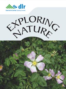DLR Biodiversiy Events 2016